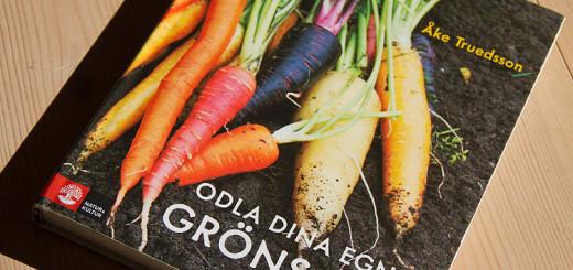 Odla dina egna grönsaker skriven av Åke Truedsson