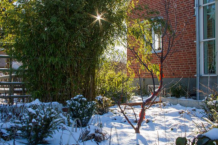 Snö och sol_framsidan