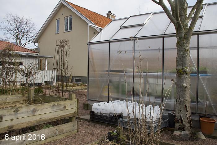 Förändring Köksträdgården 6 april 2016