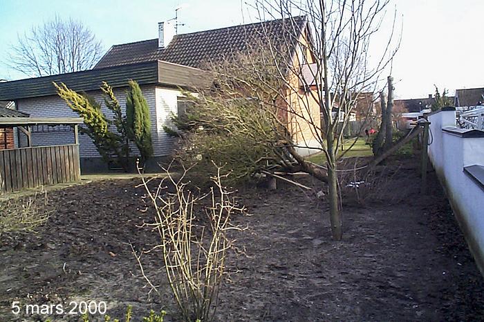 Köksträdgård 5 mars 2000_w700_med text