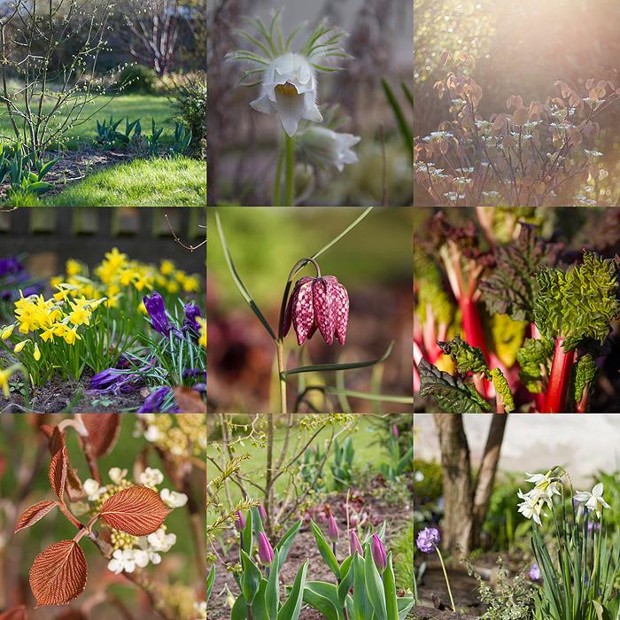 Collage april