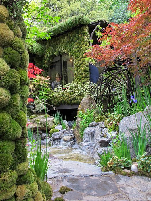 Japanska trädgården 2014