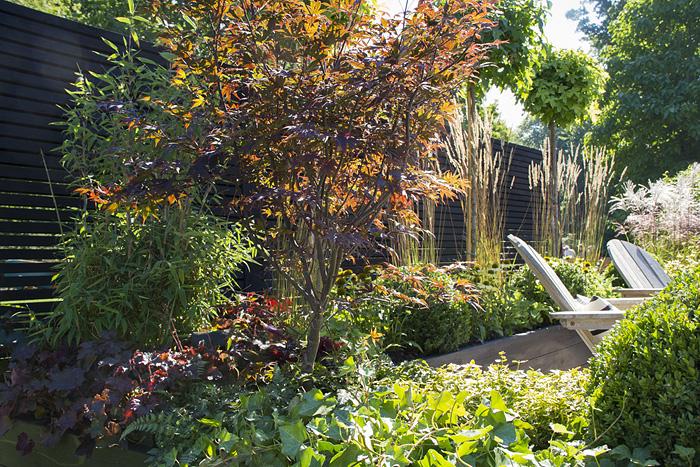 Marias trädgård_1 bilden-1