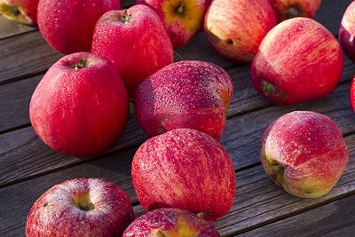 Äpple-1 w 400