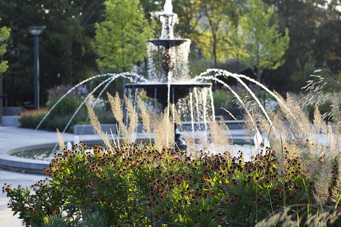 Morgon i stadsparken fontän-1