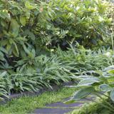 Tusen trädgårdar 2016