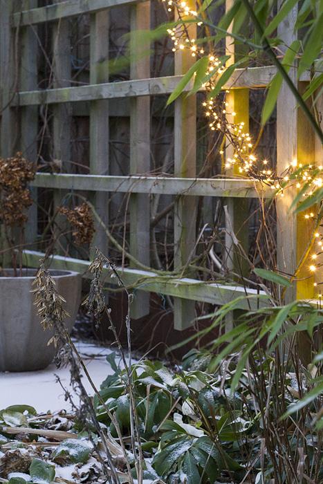 ljus julros hortensia till blogg-1