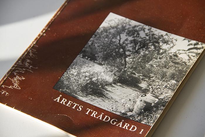 En skatt-boken-1