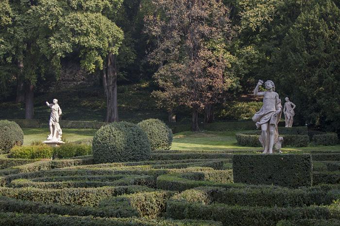 Första bilden trädgård Verona (1 of 1)