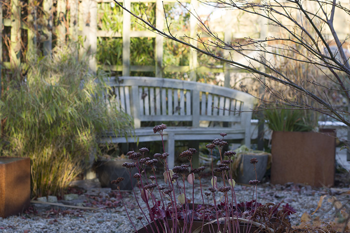 Trädgårdens vackraste - vinter (1 of 1)